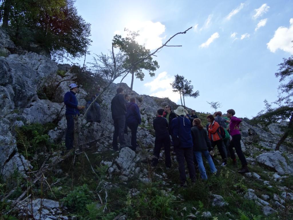 Predstavitev preliminarnih rezultatov in strokovna ekskurzija ogleda kraških jam, v katerih potekajo raziskave, foto: LU Kočevje