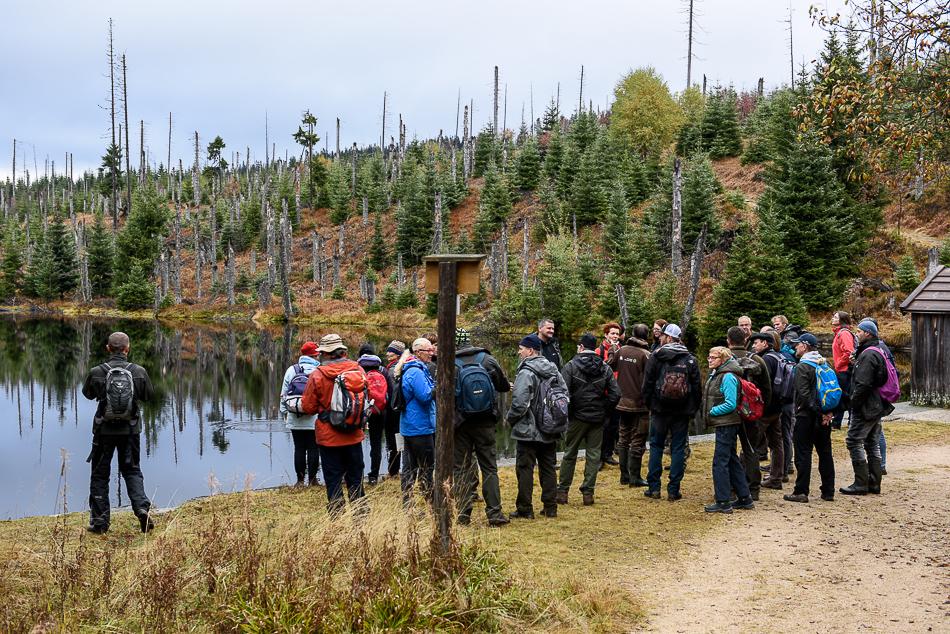 Strokovna ekskurzija v narodni park Bavarski gozd, Foto: Marko Masterl,