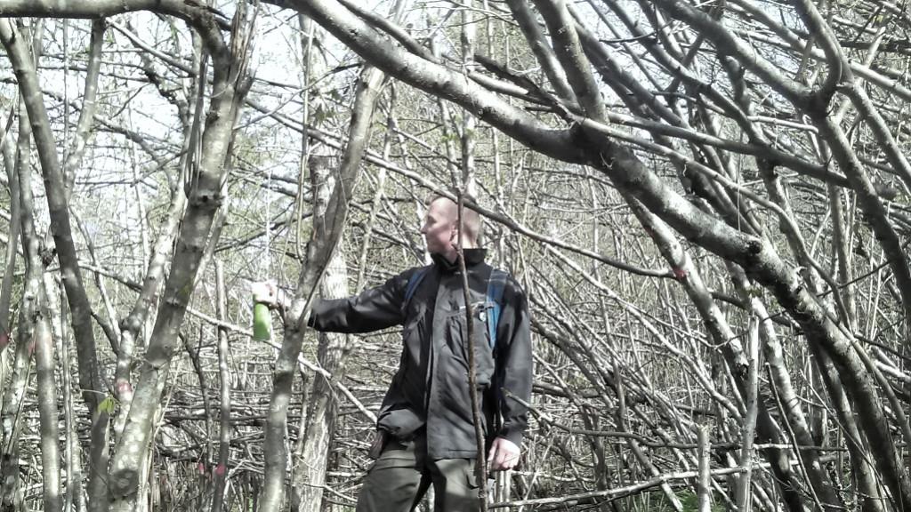 Označevanje trase za prehranjevalno ograjo za gozdnega jereba (foto: arhiv ZGS OE Kočevje)